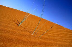 800px-Desert_of_Dubai_2010